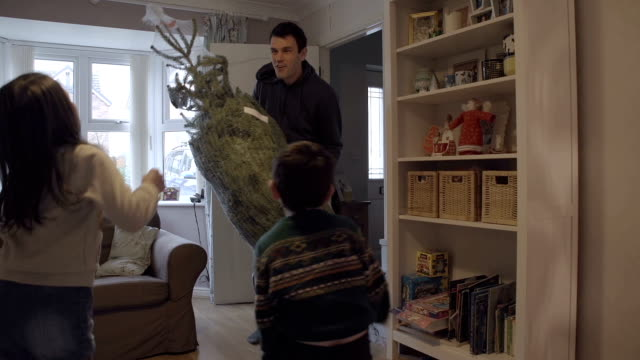 Father Returning Home With A Christmas Tree video