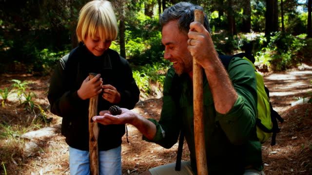 公園で息子への父示すドングリ - 息子点の映像素材/bロール