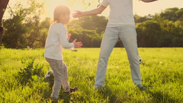 father with two sons playing football in the meadow - maglietta bianca video stock e b–roll