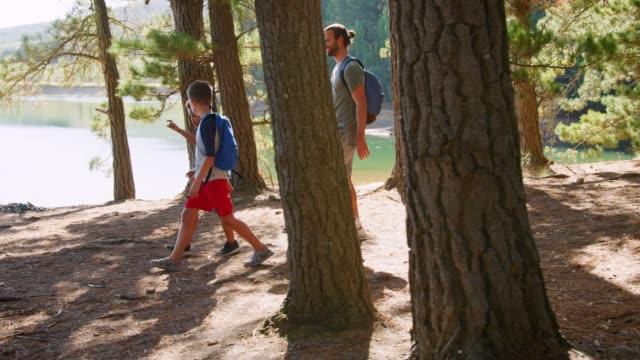 森の中をハイキングの息子と父親 ビデオ