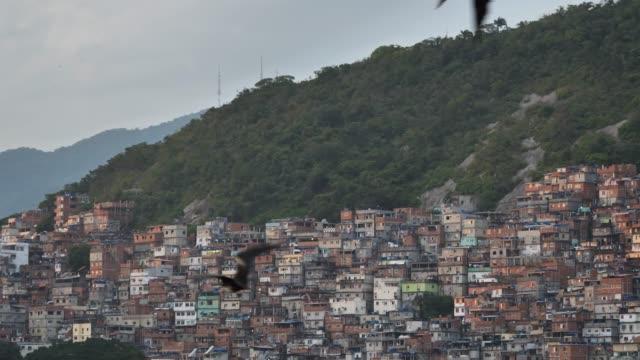 stockvideo's en b-roll-footage met favela gebouw structuur rio - christmas tree