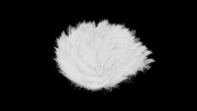 Feather Ball Explosion video
