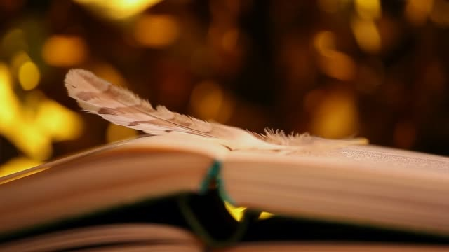 feather book wind gold bokeh