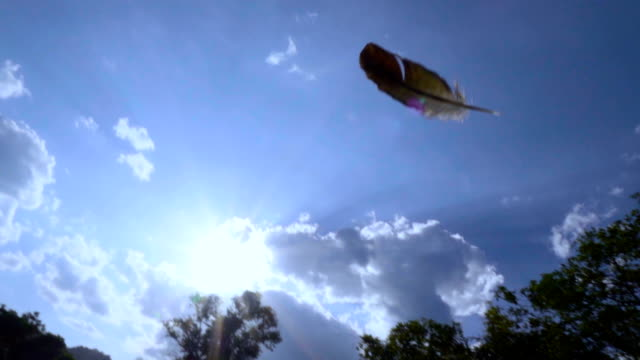 Feather flying in blue sky against sun ray SLOW MOTION.