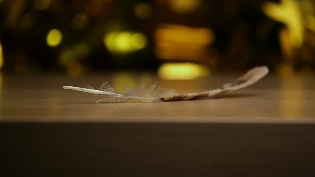 feather wind wooden table background
