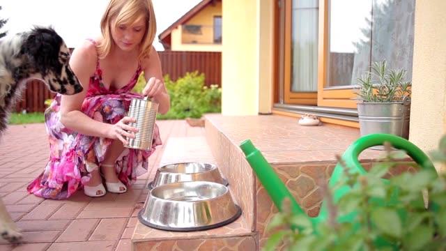 vidéos et rushes de nourrir les chiens - chien de race