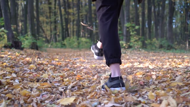 Feet in Hiking Boots Walking through Autumn Forest, Close Up. SLOW MOTION, STABILIZED SHOT. Unrecognizable woman feet tracking on fall day outdoors, walking through woodland.