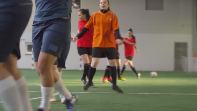 Female Athletes Having Footwork Workout on Indoor Soccer Field Side view low section shot of group of professional female soccer athletes in sports uniform having footwork training on indoor field pre game stock videos & royalty-free footage