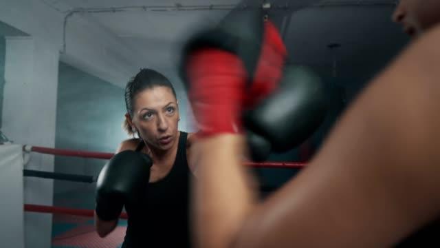 vídeos de stock, filmes e b-roll de exercício de encaixotamento fêmea - campeonato esportivo