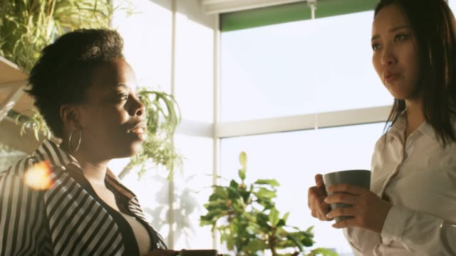 Female Colleagues Chatting in Office at Coffee Break African american businesswoman and young Asian lady having coffee break and chatting in the office at sunny day coffee break stock videos & royalty-free footage