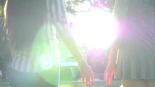 female couple are taking each other's hands with LGBT symbol on nature female couple are taking each other's hands with LGBT symbol on nature in backlighting bisexuality stock videos & royalty-free footage