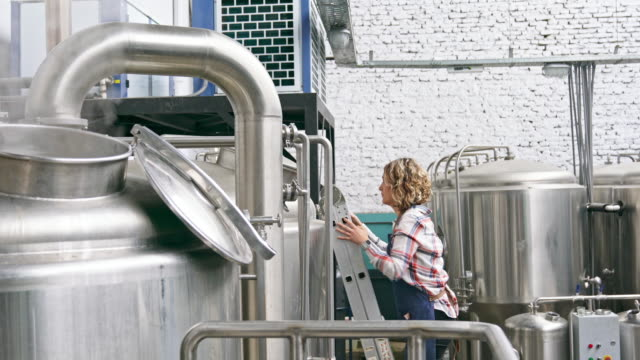 Female Craft Brewer on Ladder Checking Beer Side view of Hispanic female in mid 30s standing on ladder and lifting brewery vat lid to check status of craft beer. brewery stock videos & royalty-free footage