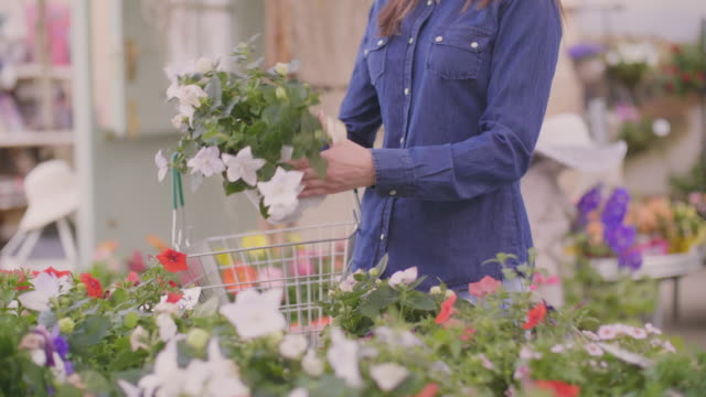 Female customer carrying basket while choosing flower pots at shop
