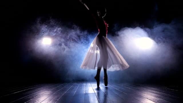 女性ダンサーは彼女のバレエのスキルを披露します。 - バレリーナ点の映像素材/bロール