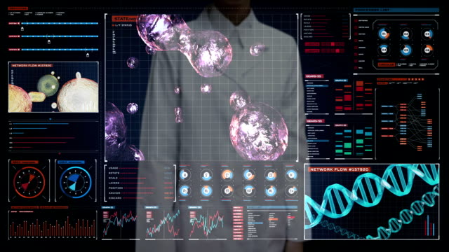 Female doctor touching digital screen, Blood cells.Human cardiovascular system, Futuristic medical application. Digital user interface. Blood cells.Human cardiovascular system, Futuristic medical application. Digital user interface. plant cell stock videos & royalty-free footage
