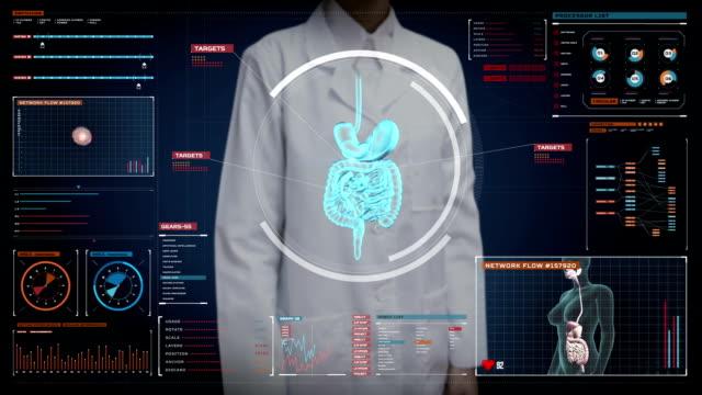 vídeos de stock e filmes b-roll de female doctor touching digital screen, zooming body scanning internal organs, digestion system in digital display.blue x-ray view. - reto descrição física