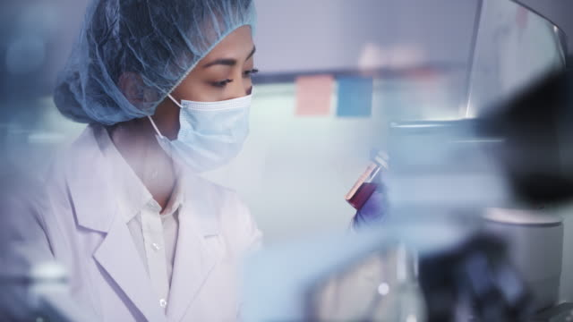 vídeos de stock, filmes e b-roll de médica trabalhando com amostras de patógenos. usando microscópio - amostra científica