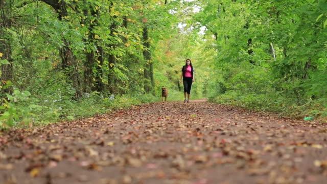 female dog walker - hund skog bildbanksvideor och videomaterial från bakom kulisserna