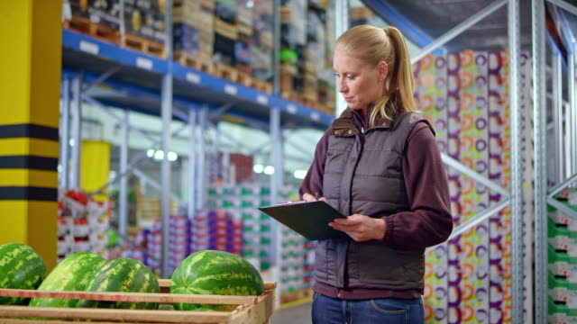 DS Female employee checking the watermelon shipment in the fresh produce warehouse
