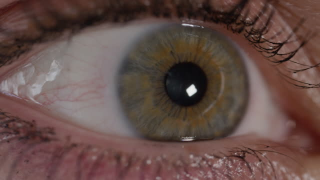 SLOW MOTION CLOSE UP: Female eye pupil contracting as she is looking around room video