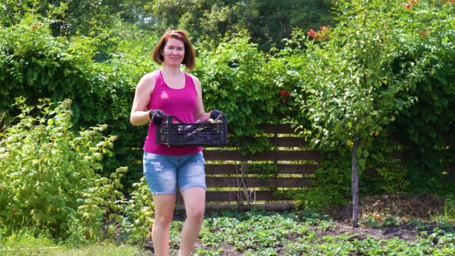 female farmer looking at camera and carrying plastic box with eggplants