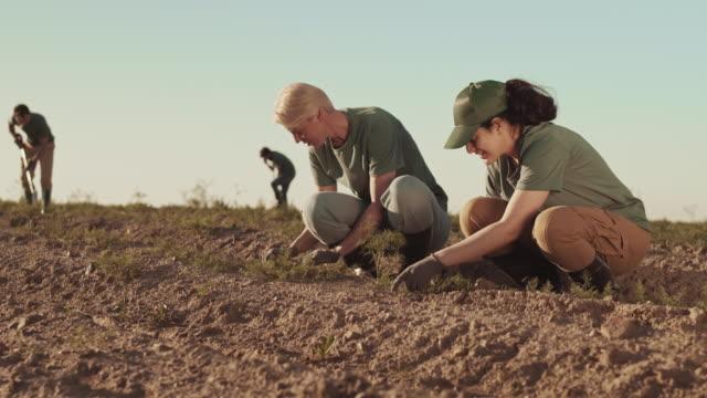 female farmers pulling out weeds in field - four seasons filmów i materiałów b-roll