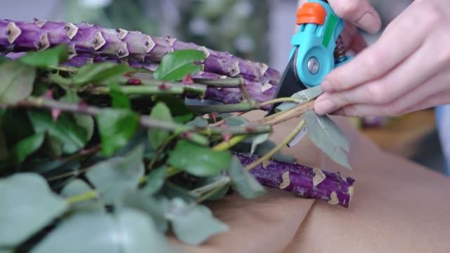 vidéos et rushes de fleuriste féminin coupe excessive branches du bouquet - composition florale