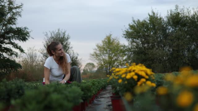 Female florist potting flowers on a farm