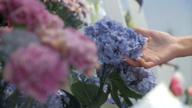 Female florist selecting blue hydrangea for bouquet