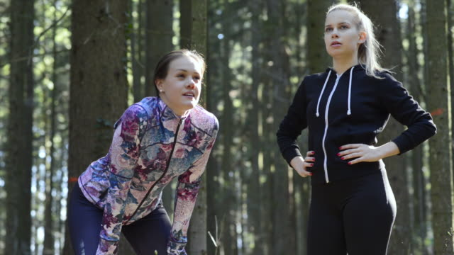 vidéos et rushes de des amis féminins prenant une pause pendant un raun traversant la forêt - joggeuse
