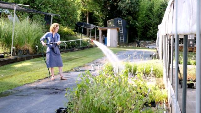 female garden center owner waters plants in nursery - tubo flessibile video stock e b–roll