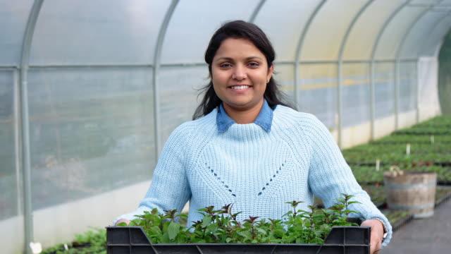 植物の保育園で木箱を持つ女性の庭の労働者 ビデオ