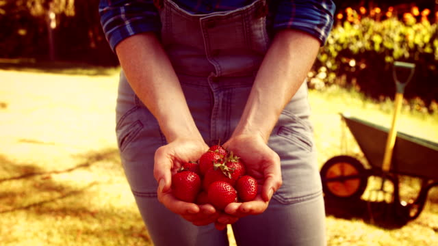 Female gardener showing strawberry in the park
