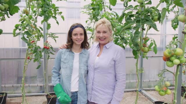 gärtnerinnen zusammen in einem gewächshaus - urban gardening stock-videos und b-roll-filmmaterial