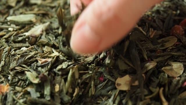 weibliche hand pickt teeblätter zum brauen. trockene blätter aus dem hintergrund von sencha grünem blume tee. makro. closeup. zeitlupe - grüner tee stock-videos und b-roll-filmmaterial