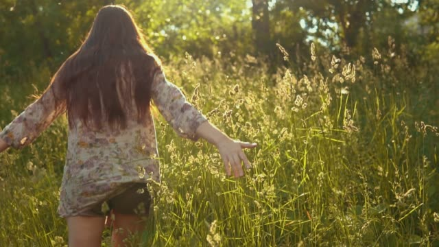Female hand touches long stems of grass in golden rays of sun. video