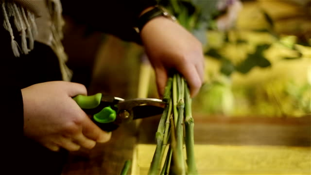 Female hands is cutting flower stems with scissors. video
