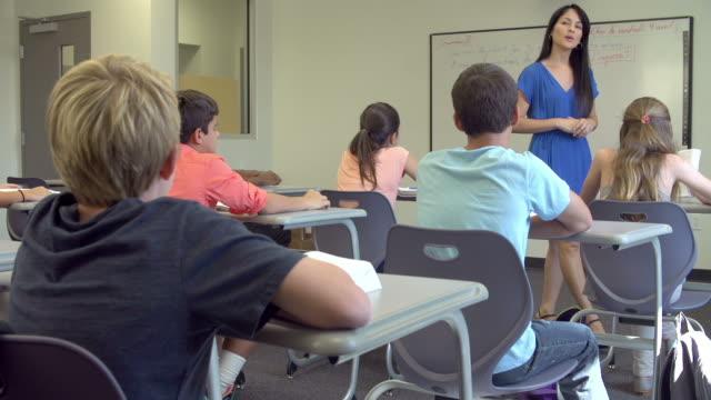женский школе учитель принимая класс - class стоковые видео и кадры b-roll