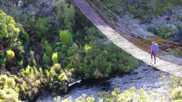 Female hiker walks over wooden swing bridge A female hiker walks across a wooden bridge over the river western cape province stock videos & royalty-free footage