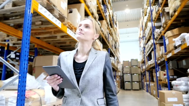Female inspector in distribution warehouse video