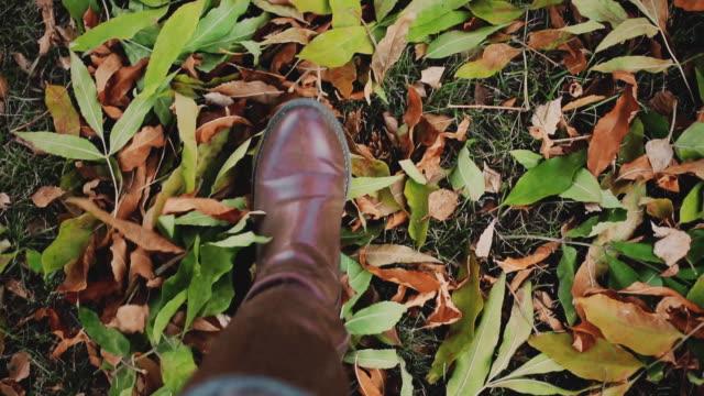 茶色のブーツで女性の足行く公園の紅葉 - 革点の映像素材/bロール