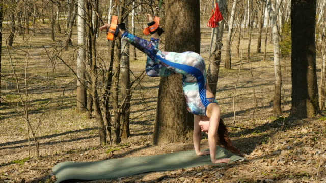 female making the aerogravity exercises outdoors Young woman practicing aerogravity in the park. The woman makes physical exercises on the ropes on tree. Flexible female hanging on the ropes and stretching her body and muscles. She's moving slowly and accuracy. arthropod stock videos & royalty-free footage