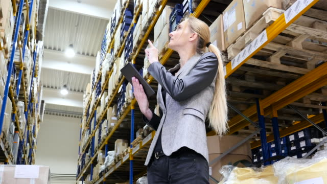 Female manager counting stocks in warehouse video