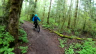 istock Female mountain biker rides along forested path 1221915273