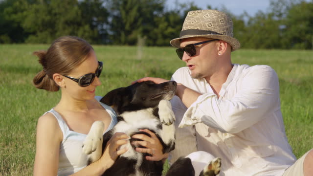 close up: female owner gives the young couple's happy puppy a nice belly rub. - border collie video stock e b–roll