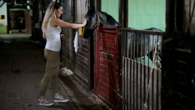 Female petting horse in stable video
