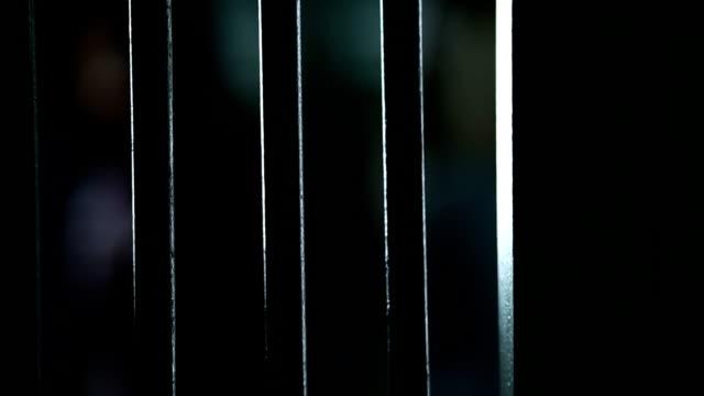 Female prisoner video