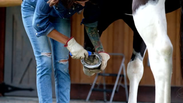 female rancher cleaning a horse shoe - horseshoe stock videos & royalty-free footage