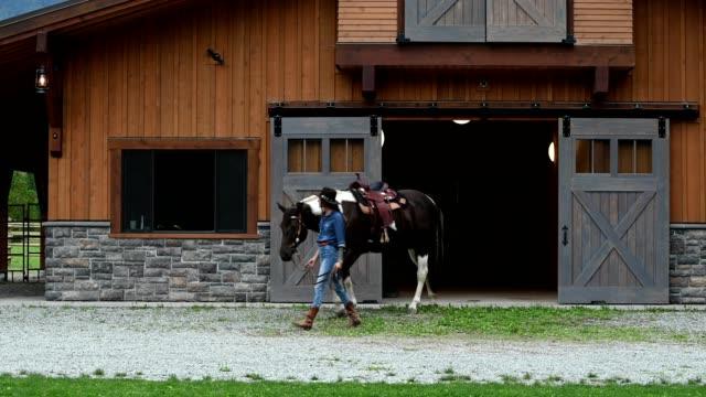 atı ile çalışan kadın çiftlik sahibi - ahır stok videoları ve detay görüntü çekimi