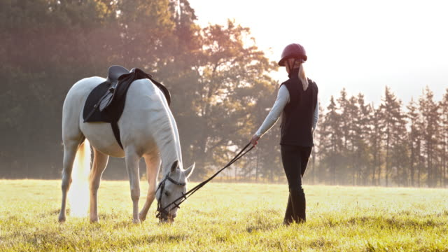 SLO MO Female rider holding grazing horse by rope